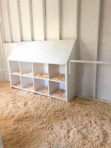 Mesh Design Chicken Coop White Interior With Nesting Boxes Reveal