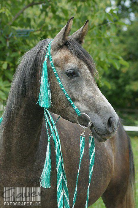 trensen western schleich pferde pinterest pferde