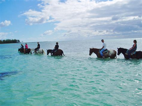 freeport horseback riding jamaica cruise excursions