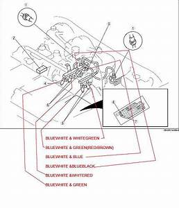 Wiring Harness For Fuel Injector Hookup