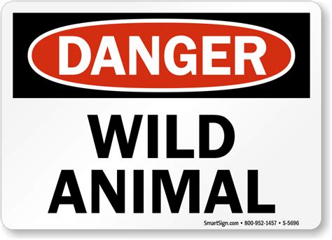Wild Animal Sign  Osha Danger Signs  Unbeatable Prices. Internet And Home Phone Service Providers In My Area. Pre Approval Home Loan Estimator. Baltimore County Courthouse Marriage. Community Colleges In Baltimore Md. How To Save Money On Homeowners Insurance. Getting Out Of Bankruptcy Steel Fab Anchorage. How Much Does Errors And Omissions Insurance Cost. Sql Server Default Password Got An Invention