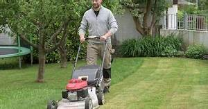Rasen Voller Moos : so erneuern sie ihren rasen ohne umgraben test garden lawn und lawn garden ~ Watch28wear.com Haus und Dekorationen