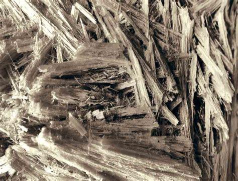asbestos type   effect  mesothelioma latency period