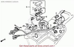 Honda Gl1200 Gold Wing 1984 Usa Wire Harness 1200  I  A