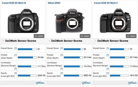 canon eos 5d mkiii trumped by d800 in testing slashgear