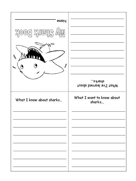 Shark Activity Sheet  My Shark Book