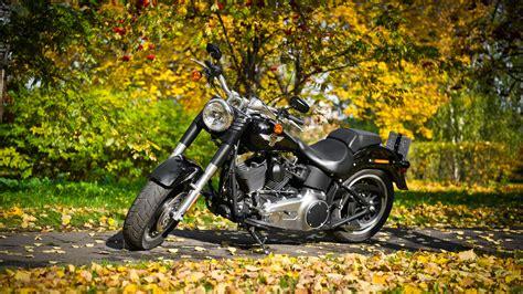 Harley Davidson Motorcycle 2, Hd Bikes, 4k Wallpapers