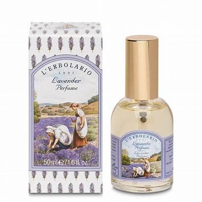 Perfume Lavender Fragrance Perfumes Ml Provence Sweet