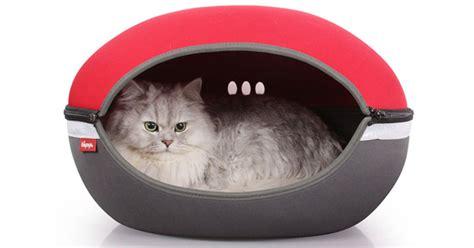 10 Of The Best Cat Beds Petmoneysaver