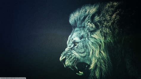 Roaring Lion Wallpaper (67+ Images