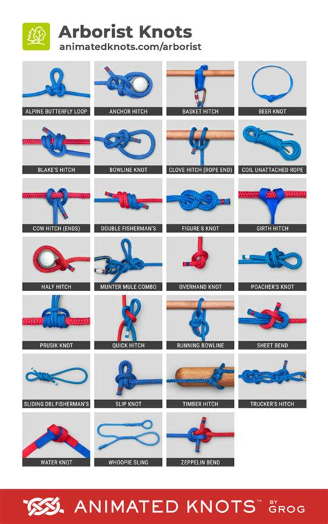 arborist knots learn   tie arborist knots