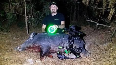 hog hunt  night   green kill light motion sensor