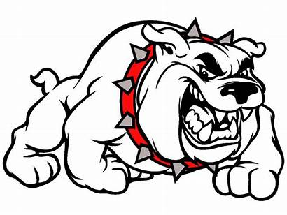Bulldog Baseball Clipartpanda Mascot Clipart Powerpoint Terms