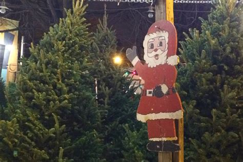 where you can buy a christmas tree in chicago map