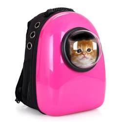 cat backpack capsule cat carrier backpack let your cat travel like an