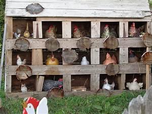 Hühner Aus Beton : unser selbstgebauter h hnerstall paradies am lusen ~ Articles-book.com Haus und Dekorationen