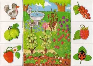Gemüse Pflanzen Was Passt Zusammen : 43 besten was passt zusammen bilder auf pinterest ~ Lizthompson.info Haus und Dekorationen