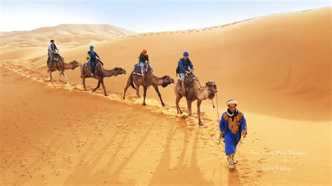 Morocco The Desert Experience Sahara On Camel And The