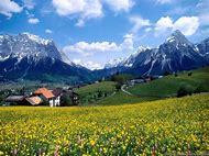 Spring Mountain Desktop