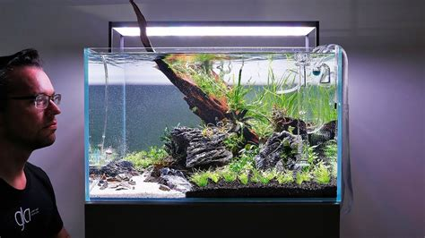 Setting Aquascape by How To Set Up A Beautiful Nature Aquarium Aquascape