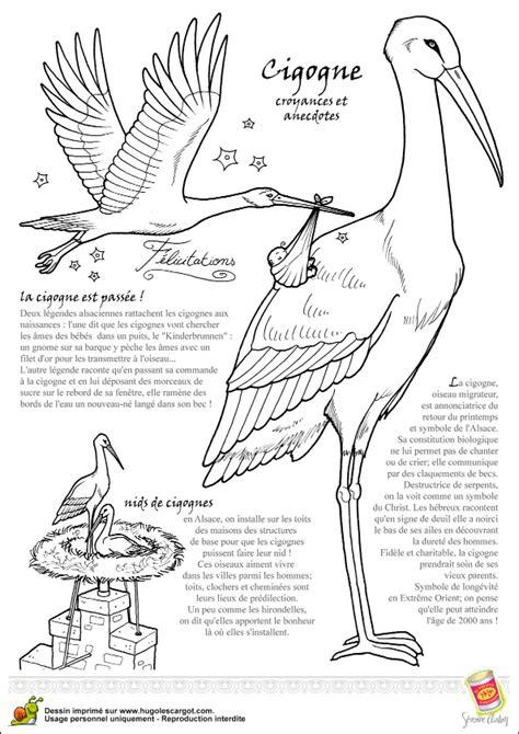 fabriquer cuisine coloriage oiseau legende cigogne sur hugolescargot com