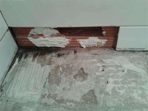 enlever humidité chambre enlever humidite salle de bain appliquer ou r parer un