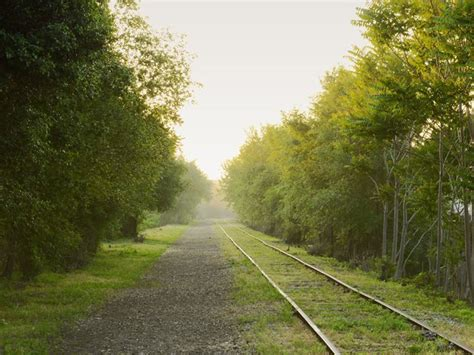scenic paths  run  chicago   fall