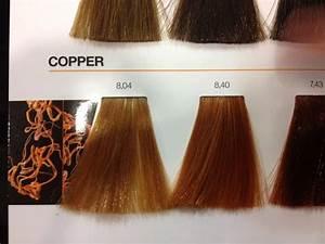 Rose Gold Hair Colour Chart Loreal Inoa Copper Colour Chart Hair Pinterest