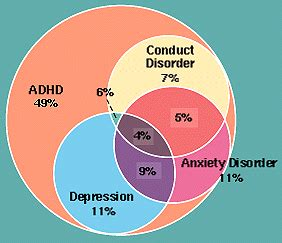Diagram Of Adhd by Canadian Adhd Venn Diagrams Add Forums Attention