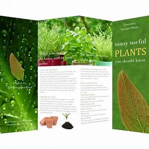 Brochure Layout Samples Brochure Templates Samples Brochure Maker Publisher Plus