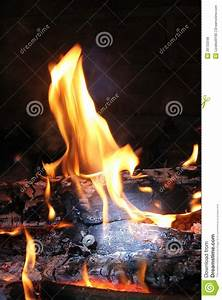 Burning Log In Hot Fire And Flames Stock Photo - Image of ...