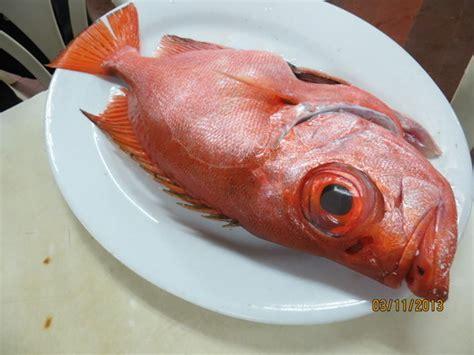 fish  eat restaurants fish chowhound