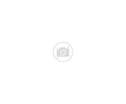 Cake Birthday Clipart Candles Lots Clip Transparent