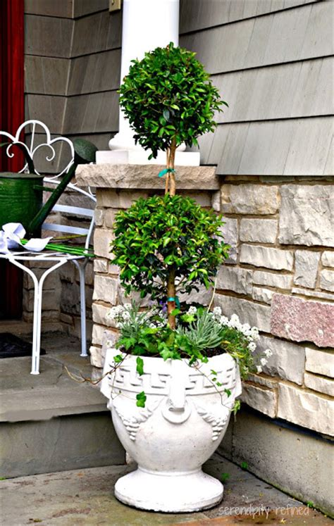 planting urns ideas landscaping ideas for planting urns