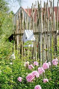 Schattenpflanzen Garten Winterhart : sichtschutz rankhilfe nat rliche sichtschutzwand gartengestaltung pomponetti garten ~ Sanjose-hotels-ca.com Haus und Dekorationen