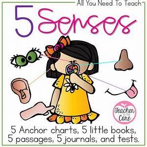 Reading Fluency Chart 5 Senses By Teacher To The Core Teachers Pay Teachers