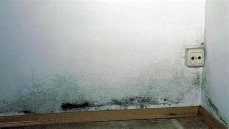 Putz Bröckelt Der Wand Ursache by Feuchtigkeit Wenn Der Putz Br 246 Ckelt 187 Kasatech