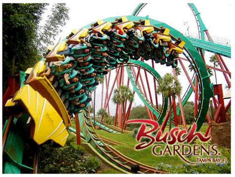 who owns busch gardens isvlsi 2014