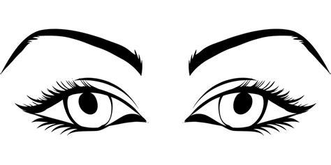 eyelashes   eyes clipart clipground