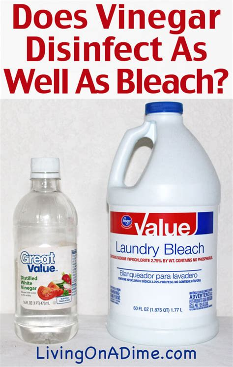 Does Vinegar Disinfect As Well As Bleach?  Living On A Dime