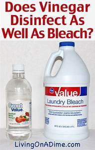 does vinegar disinfect as well as bleach living on a dime With bed bug disinfectant