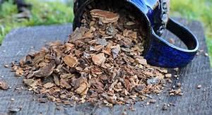 Грецкие орехи для лечения простатита