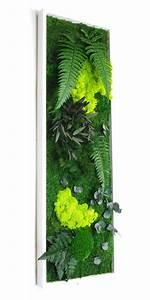 Tableau Végétal Mural : les 25 meilleures id es de la cat gorie tableau vegetal ~ Premium-room.com Idées de Décoration