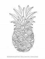 Coloring Pages Adult Mandala Pineapple Printable Fruit Zentangle Illustrated Food Fruits Drawing Mandalas Books Cute Colouring Browning Marie Sheets Adults sketch template