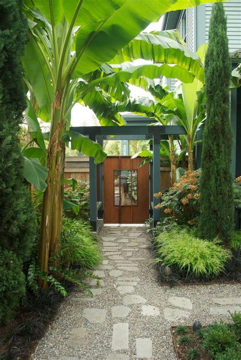 tropical garden design landscape contemporary with iron