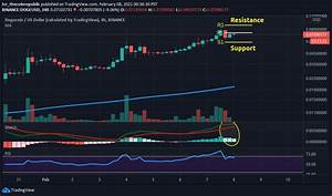Dogecoin Price Analysis Doge Trending At Twitter With All