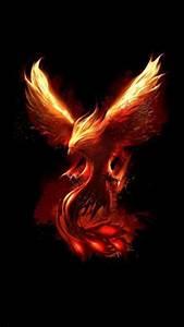 Phoenix Bird Drawing Phoenix Wallpaper 109 Phoenix Bird Tattoos Phoenix
