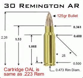 Remington Introduces new 30 Remington AR Cartridge « Daily ...