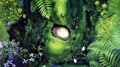 Totoro Neighbor Background Mei Wallpapers Anime