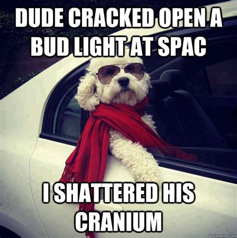 Bud Light Meme - dude cracked open a bud light at spac i shattered his cranium misc quickmeme